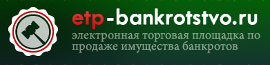 ЭТП Банкротство РТ сопровождение агента на торгах
